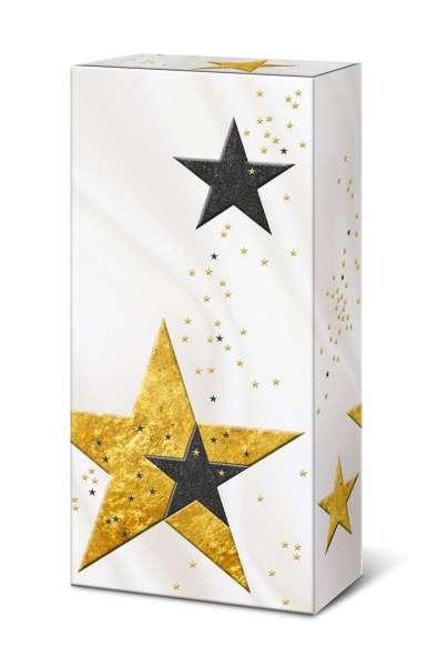 2er Faltschachtel Sterne